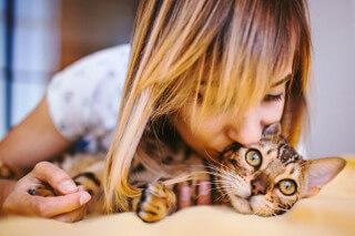ライブでゴーゴーの登録お祝い金の詳細と7万円全額受け取るための目安のイメージ画像(高級な猫)